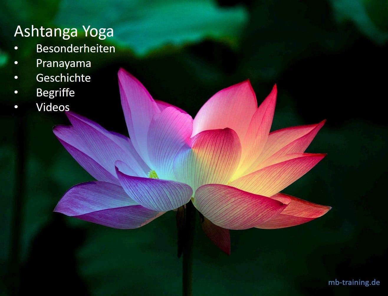 Ashtanga Yoga und die Besonderheiten, Serien,  Geschichte dieser Yoga-Art. Begriffe: Mantra, Pranayama, Drishti, Bandhas und Vinyasa.