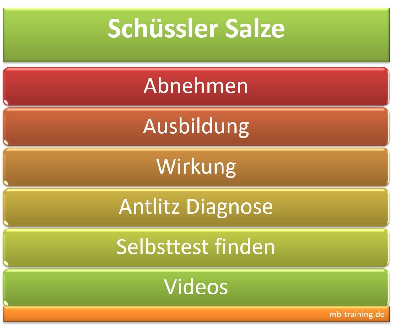 Schüssler Salze Info zum Abnehmen, der Ausbildung, der Wirkung, zur Antlitz Diagnose und Selbsttest, Grundsalze u. Ergänzungsmittel sowie Videos.